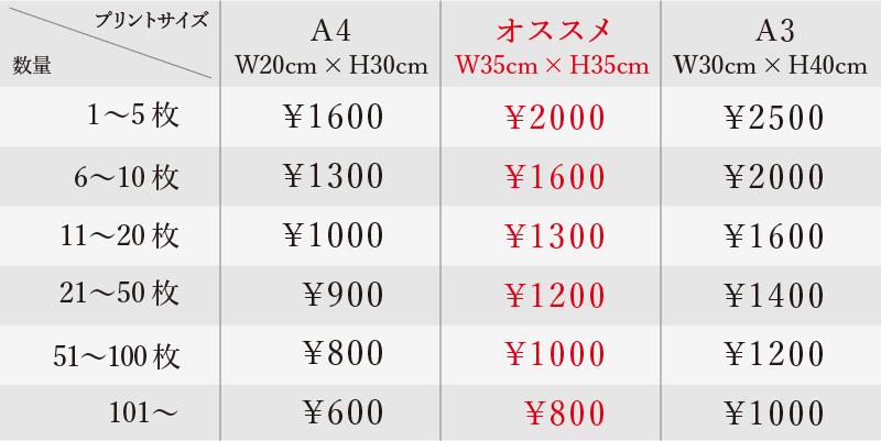 【価格表】フルカラーインクジェットプリント/白色生地へのプリン